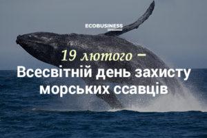 Всесвітній день захисту морських ссавців або День китів