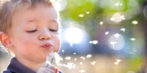 День алерголога